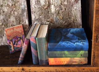 HP: The Book Series I Grew Up With