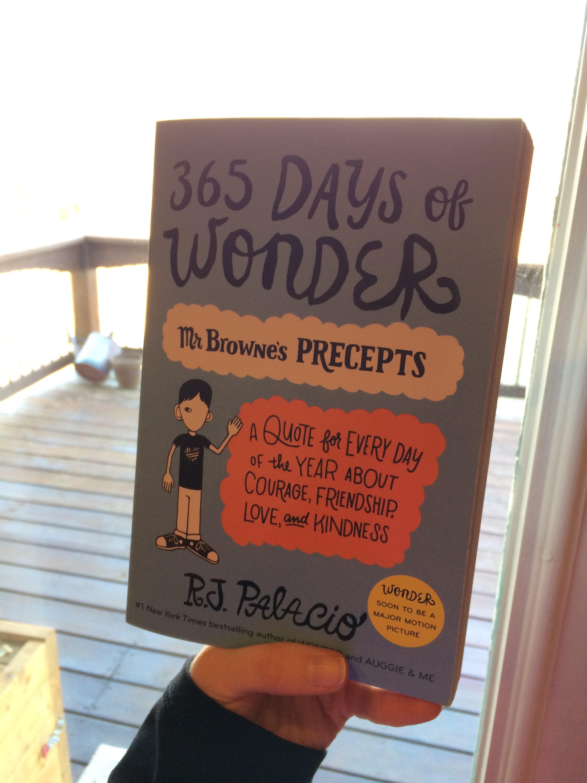 365 Days Of Wonder February 20 Mrs Book Dragon