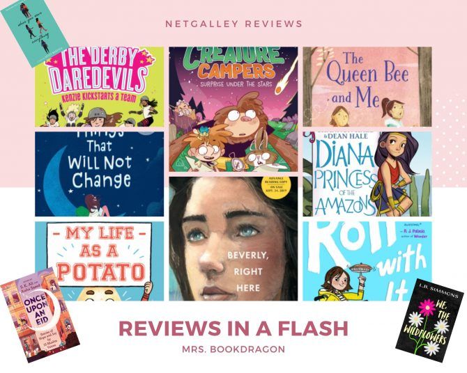 NetGalley Reviews In A Flash