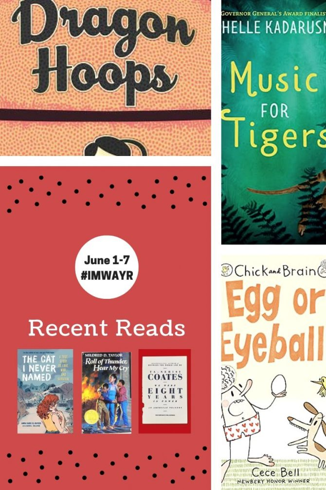 Recent Reads and Bingo Check-In