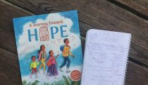 Picture Book Frenzy: A Journey Toward Hope by Victor Hinojosa and Coert Voorhees and illustrated by Susan Guevara