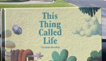 Labor Day Picture Book Frenzy Book 5: This Thing Called Life by Christian Borstlan